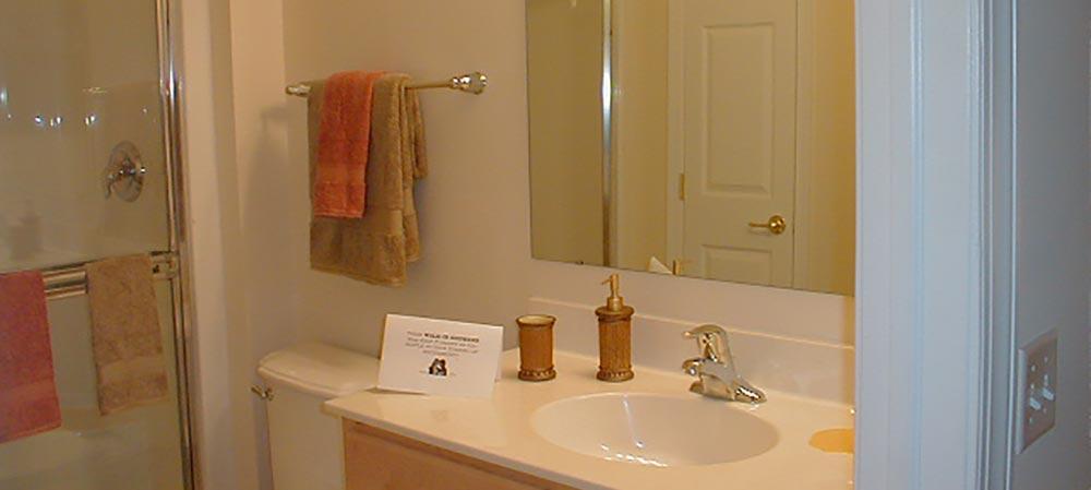 Deemers Landing apartment bathroom